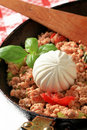 Ground meat stir fry Royalty Free Stock Photos