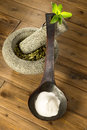 Ground and powder stevia wooden spoon with natural sweetener mortar with dried leaves Stock Images