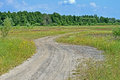 Ground road in the meadow travel blue sky with white clouds details Royalty Free Stock Photos
