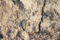 Ground texture natural background dry gray cracked Royalty Free Stock Photography