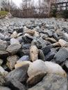 Rocks yard background