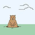 Groundhog day animal wake up spring holiday flat vector illustration Royalty Free Stock Images