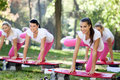 Group of aerobic women doing exercise on steppers Stock Image