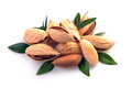 Group of almond nuts Royalty Free Stock Photo
