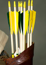 Group of arrows of a medieval bow in the quiver set colorful Royalty Free Stock Image
