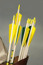 Group of arrows of a medieval bow in the quiver set colorful Stock Images