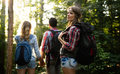 Group of backpacking hikers going for forest trekking Royalty Free Stock Photo