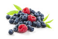Group of berries  on white Royalty Free Stock Photo