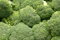 Group of Broccoli Stock Photos