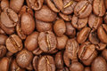 Group of brown coffee grains background, macro, close-up