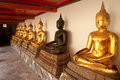 Group of Buddhas in the wall at church . Royalty Free Stock Photography