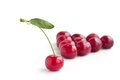 Group of cherry with different one isolated on white background Stock Image