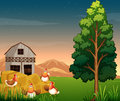 A group of chickens near the hays at the farm illustration Royalty Free Stock Images