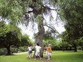 Group of children playing ring a ring o roses in park circling tree holding hands Stock Photography