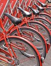 stock image of  Group of colorful classic red bicycles for rent on the street of city Padua, Italy