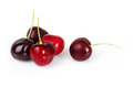 Group of delicious cherries Stock Photos