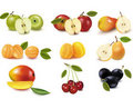 Group with different sorts of fruit. Stock Photography