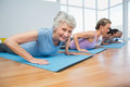 Group doing cobra pose in row at yoga class Royalty Free Stock Photo