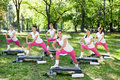 Group exercise of women exercising in a park Royalty Free Stock Image