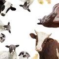 Group of farm animals