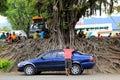 Group of fijian church goers attending outdoor service nadi fiji seated around base gigantic tree while Stock Photo