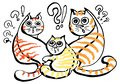 stock image of  The group of fluffy red and orange striped cats is very surprised.