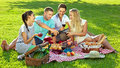 Group of four young friends enjoying a healthy picnic sitting outdoors on a red and white checked rug on green grass drinking red Royalty Free Stock Photo