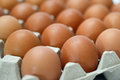 Group Of Fresh Eggs In Pater T...