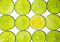 Group of green lime slices with one standout lemon slice Stock Images