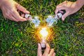 group hand holding lightbulb with sunset on grass. concept idea Royalty Free Stock Photo