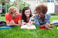 Group of happy college students in grass Royalty Free Stock Images