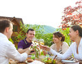 Group of happy friends toasting wine glasses in the garden while having lunch Royalty Free Stock Photography