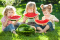 Group happy kids eating watermelon green grass summer park Stock Photo