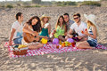 Group of happy young people having a picnic on the beach an enjoyable with healthy food three them playing music female is Stock Images
