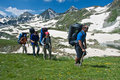 Group of hikers in mountain wally. Royalty Free Stock Photos