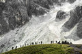 Group of hikers pale di san martino dolomites in summer season Royalty Free Stock Photography