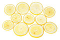 Group lemon slices to the light. Royalty Free Stock Images