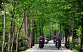 Group men their motorcycles riding along tree lined rural road pengzhou sichuan province china Royalty Free Stock Images