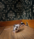 Group of mice walking in a luxury old-fashioned ro Royalty Free Stock Photo