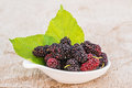 Group of mulberries isolated on wood. Royalty Free Stock Photo