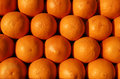 Group of oranges ready for juicing Royalty Free Stock Images