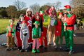 Group of people dressed as elves adults and children standing on walkway on sunny day Stock Images