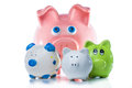 Group of piggy banks a picture four in front a white background Stock Photography
