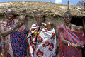 Group portrait of maasai women with babies kenya village narooswa family masai mothers their children these people are members the Stock Photo