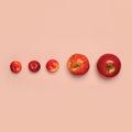 Group red apples fruits isolated on pink background, creative fashion minimalism