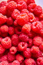 Group of red raspberries Royalty Free Stock Photo