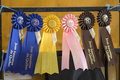 Group of ribbons for the winners Royalty Free Stock Photo