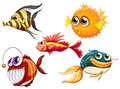 A group of sea creatures illustration on white background Stock Images