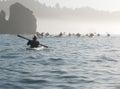 Group of sea kayakers Royalty Free Stock Photo