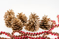 Group of seven golden pines cones and red garland Royalty Free Stock Photo